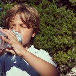 Botellas de plástico Equa 100% seguras