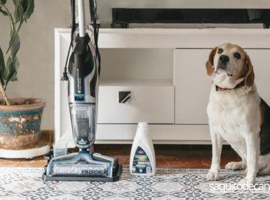 aspirador especial para mascotas